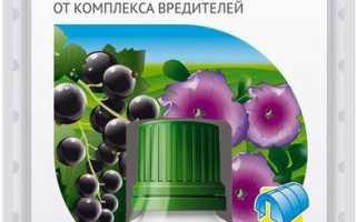 Как развести фитоверм для клубники?
