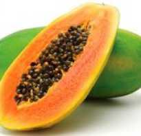 Как вырастить папайю из семян в домашних условиях