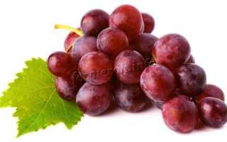 Виноград Кардинал: описание сорта, фото и отзывы садоводов