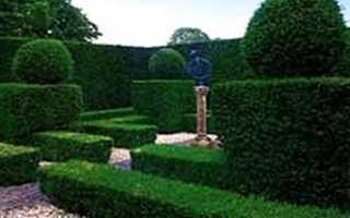 Основные стили садово-паркового искусства