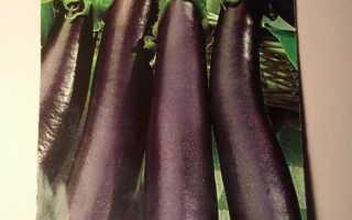 Баклажан Банан — описание сорта, фото, отзывы, посадка и уход