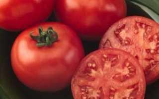 Как правильно ухаживать за томатами ляна