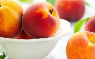 Клястероспориоз персика и лечение