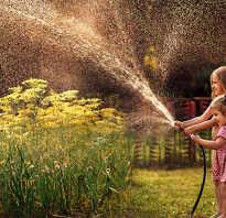 Как выбрать шланги для полива: виды и характеристики садовых шлангов