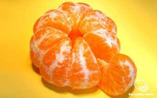 Все полезные свойства мандаринов и противопоказания