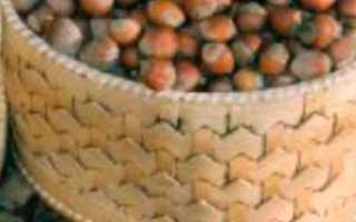 Сорта фундука (лещины): фото и описание растений