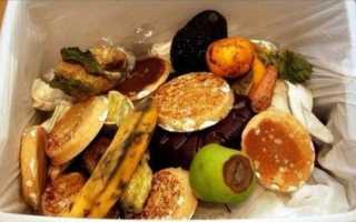 Пятая часть пищи в мире выбрасывается