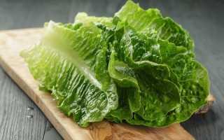 Технология выращивания салата ромэн на дачном участке
