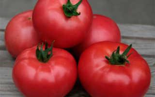 Томат Алези F1 — описание сорта, отзывы, урожайность