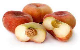 Как вырастить из косточки инжирный персик?