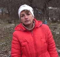Осенняя обрезка крыжовника: видео