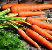 Когда сажать морковь в этом году по лунному календарю?