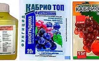 «Кабрио топ» фунгицид — инструкция по применению к винограду