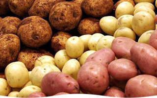 Лучшее время для посадки картофеля
