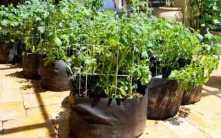 Посадка картофеля в мешках пошагово