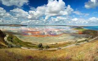 Антропогенные факторы воздействия на природу, причины, признаки. Как бороться?