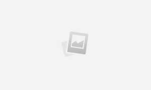 Груша пермячка: характеристика, секреты успешного выращивания