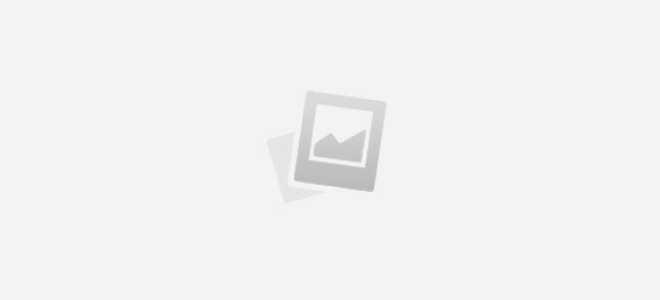 Чем полезен осот: химический состав и применение растения